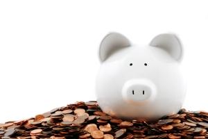 small-fry-fundraising